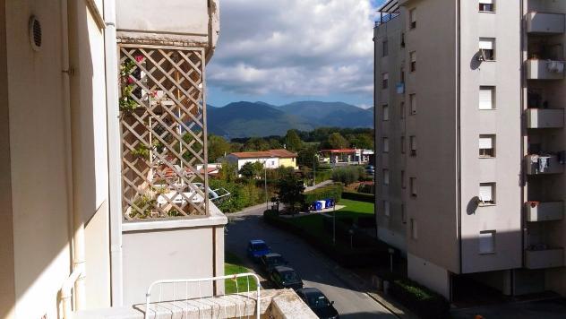 Appartamento in vendita a Pisa 40 mq Rif: 464941